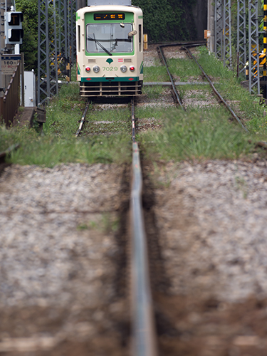 都電荒川線 20の高画質画像
