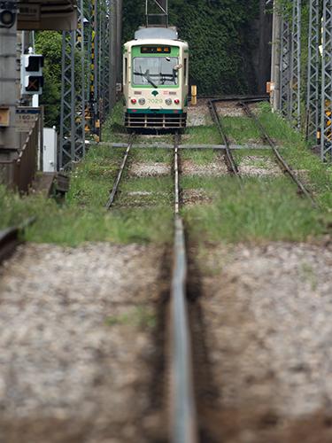 都電荒川線 21の高画質画像