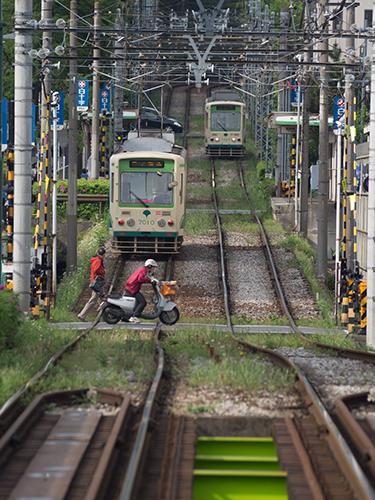都電荒川線 31の高画質画像