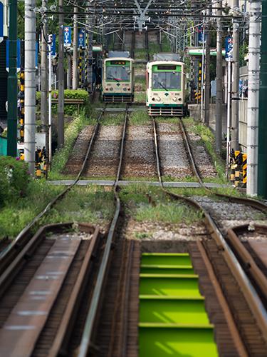 都電荒川線 35の高画質画像
