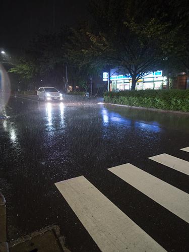 雨が降った夜道 12の高画質画像