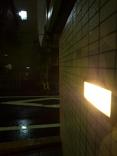 雨が降った夜道 24の高画質画像