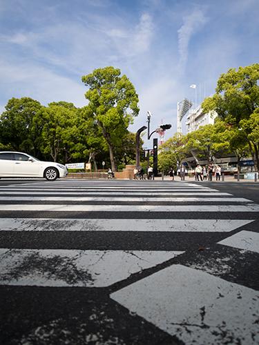 横浜公園、横浜スタジアム近く 3の高画質画像