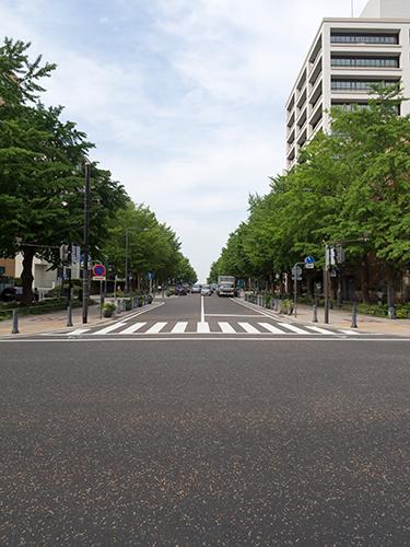 日本大通り周辺 3の高画質画像