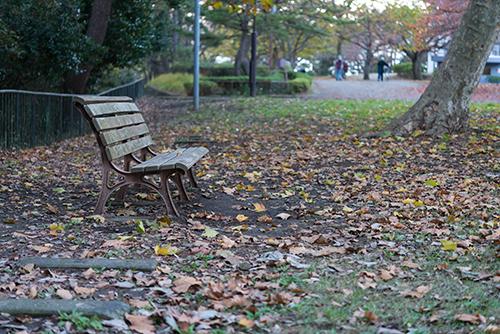 落ち葉とベンチの高画質画像