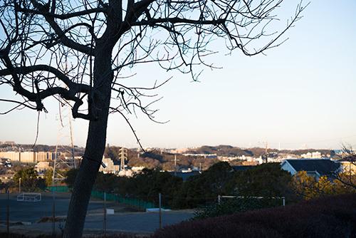 高台からの眺め 1の高画質画像