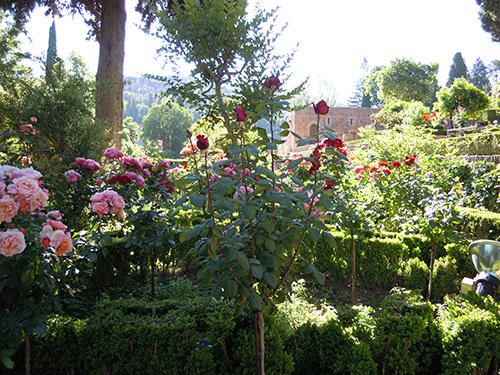 アルハンブラ宮殿の庭 6の高画質画像