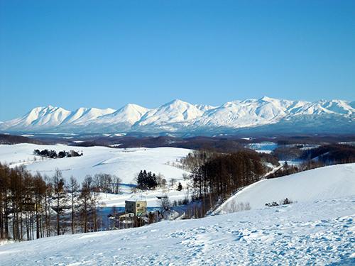 冬の四季彩の丘 3の高画質画像