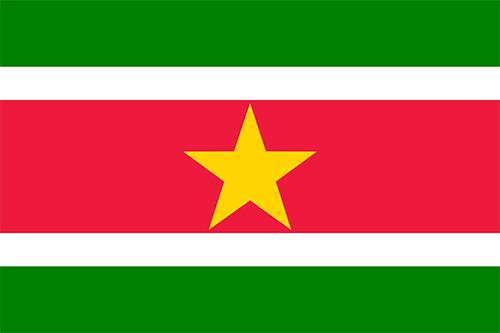 スリナムの国旗の高画質画像