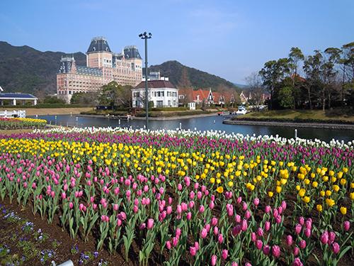 お花畑、長崎県佐世保市 2の高画質画像