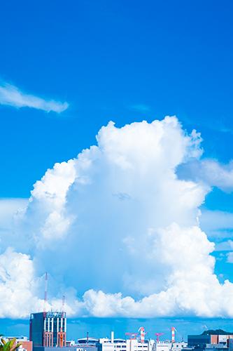 青空 14の高画質画像