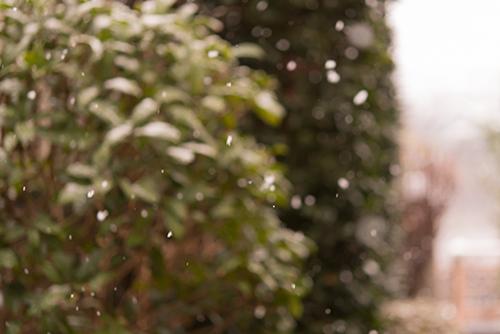 雪の日の景色 6の高画質画像
