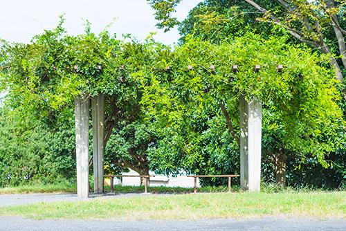 公園のベンチ 1の高画質画像